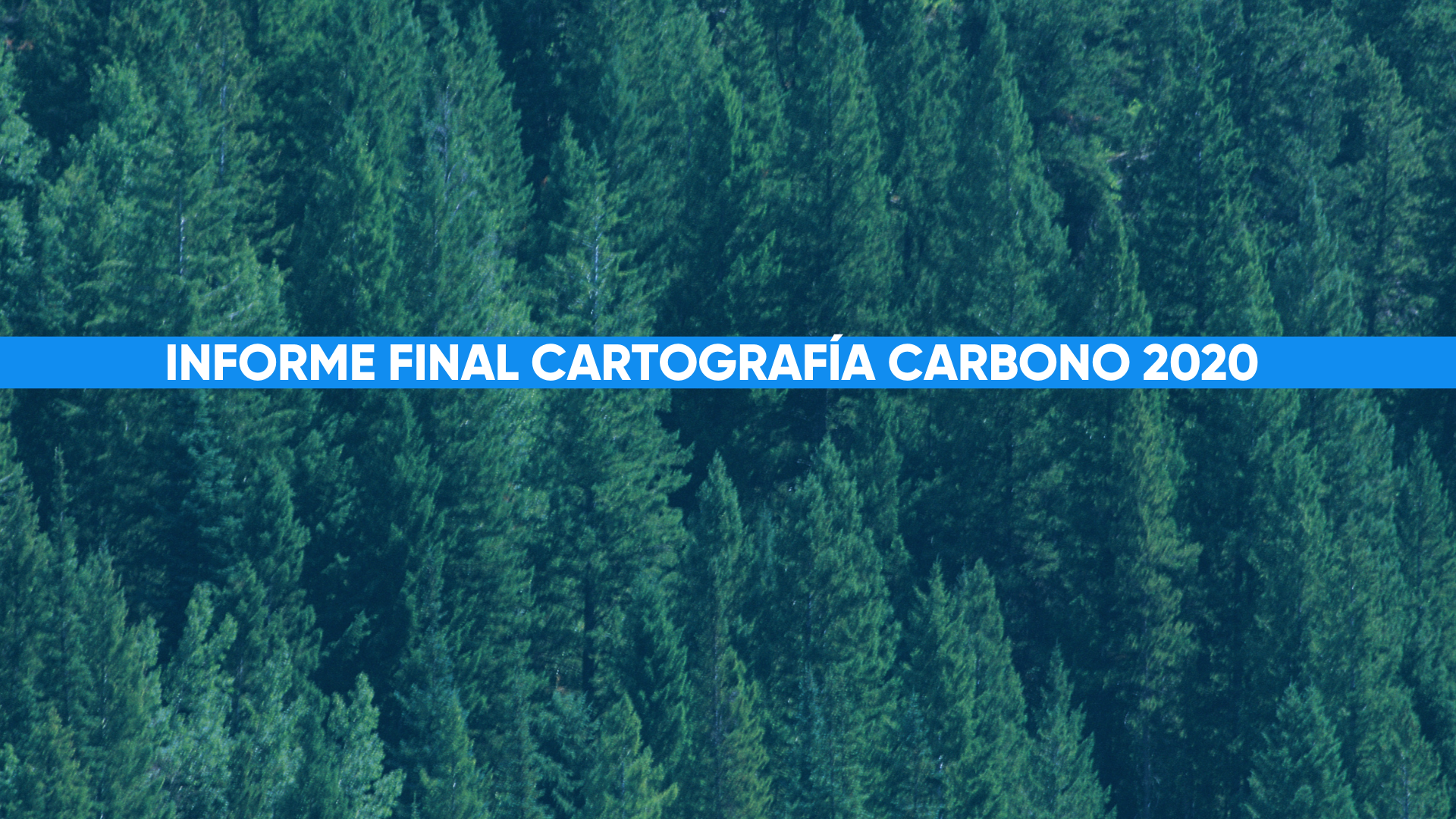 Cartografía Carbono